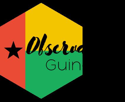 Observateur guinee